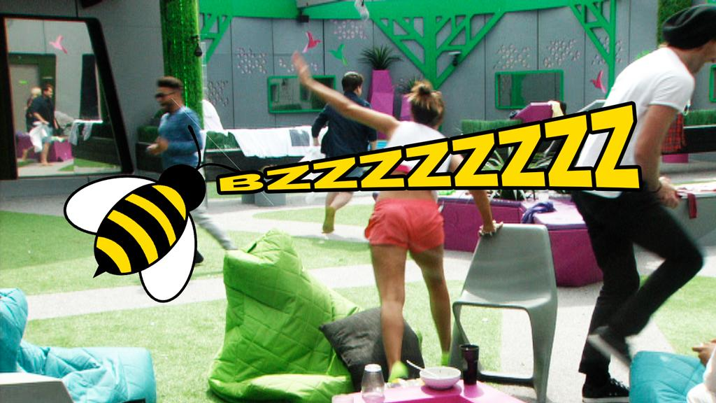 EEK! Watch HMs scream in fright as they're greeted by an unwanted visitor in the garden… http://t.co/UyBh0jdsUy #BBUK http://t.co/j9kJlcqjLr