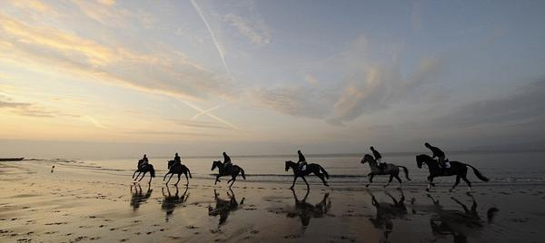"""""""@CMhearnaig: Equestrians on Exmouth beach. http://t.co/gzqdCMgZco"""" awesome shot in the #heartofdevon"""