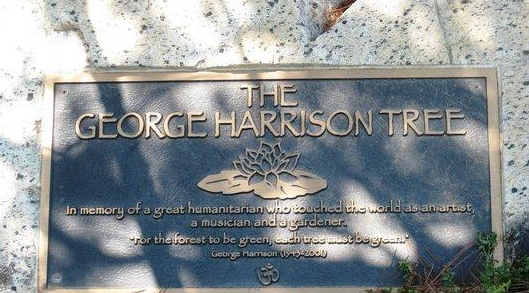 "Favorite headline today: ""George Harrison Memorial Tree killed ... by beetles"" http://t.co/Y0CIfMe6K4 http://t.co/a4EJflHMxC"