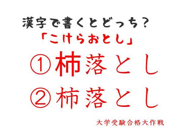 漢字 こ けら