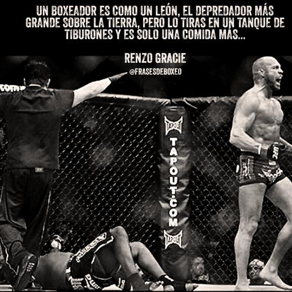 Antonio Macías On Twitter Un Boxeador Es Como Un León El