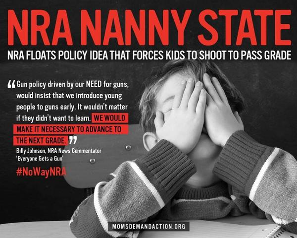 NRA Nanny State Poster