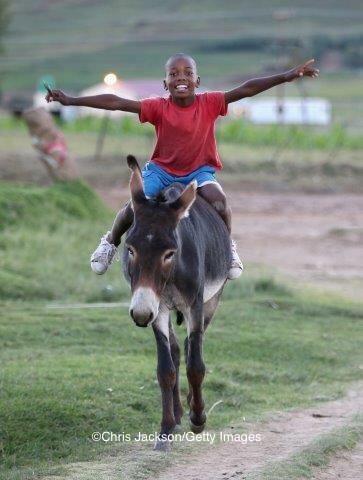 3. The most common mode of transport is by horseback, especially in the mountains #Lesotho http://t.co/j71BQxJ5uY