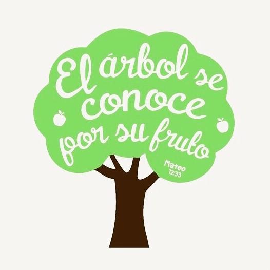 CURSILLOS DE CRISTIANDAD DE ALCALÁ: «Cada árbol se conoce por su fruto»