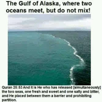 the gulf of alaska where two oceans meet but do not mix bleach