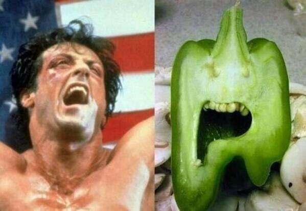 """""""@MENnewsdesk: Send us your best Sylvester Stallone impression and you could meet the man himself"""" http://t.co/vYc9FcDg00"""