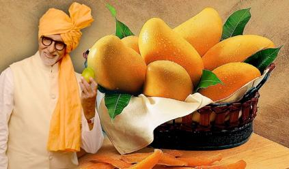 Image result for amitabh bachchan fruit ad
