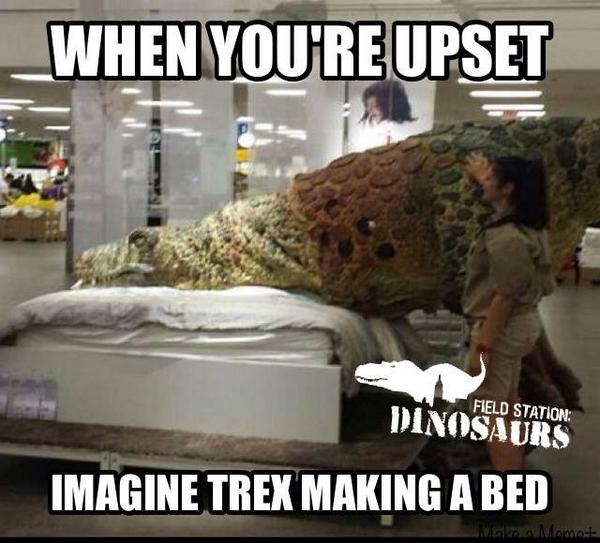 FieldStationDinosaur On Twitter When Youre Upsetimagine - T rex bed