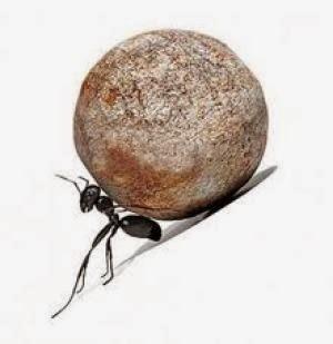 Resultado de imagen para sisifo y hormigas