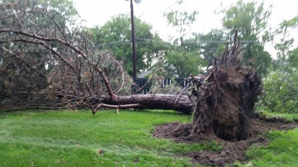 . @NWSDetroit @HallyVogelWXYZ we have several trees down around my location in Commerce. Siren sounding #backchannel http://t.co/hCTYXJtA3p