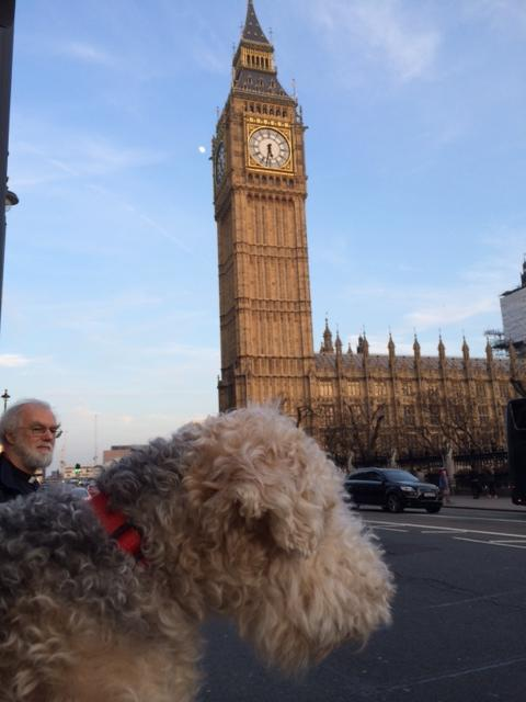 Friend of a friend always takes pic of his dog Billy next to buildings. Was peeved by photobomber then saw who it was http://t.co/U7lrycbORn