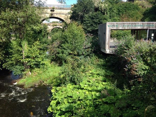 High summer and #Edinburgh is twenty shades of green. This is the Water of Leith, Union Canal and rail bridge. http://t.co/8GSVlugWlQ