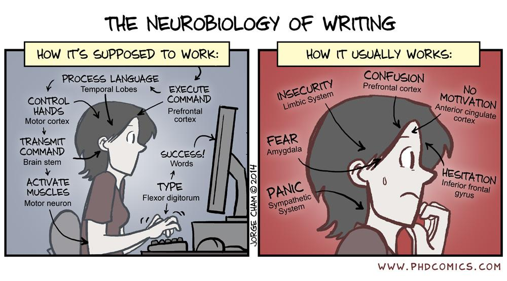 block diagram javascript phd comics on twitter quot the neurobiology of writing http