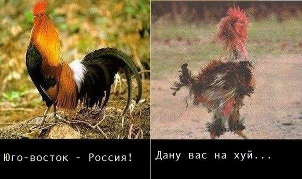 В Донецке отключили оставшиеся украинские телеканалы, - СМИ - Цензор.НЕТ 3620