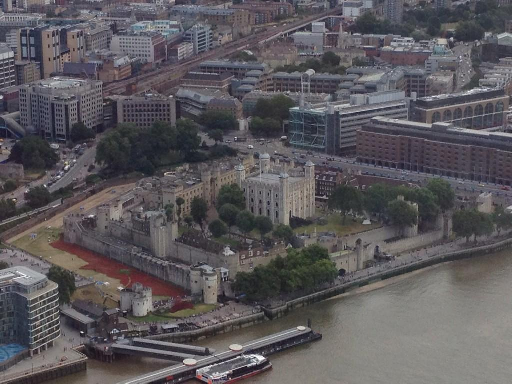 And those poppies from above http://t.co/xnJNzsCkfx (via @ands61) #TowerOfLondon
