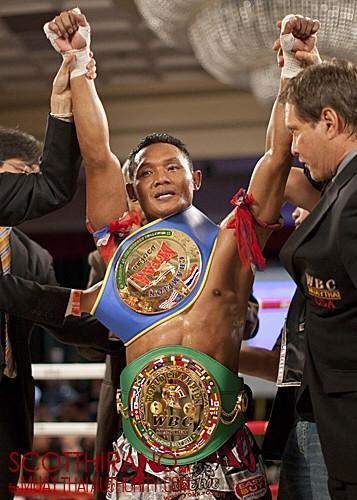 """キューブマン on Twitter: """"WBC..."""