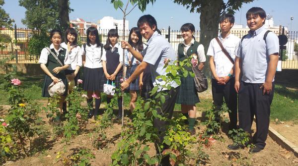Expedición de estudiantes japoneses en visita Coria del Río, en el parque Carlos de Mesa @aytocoria http://t.co/pf2gtRzrac