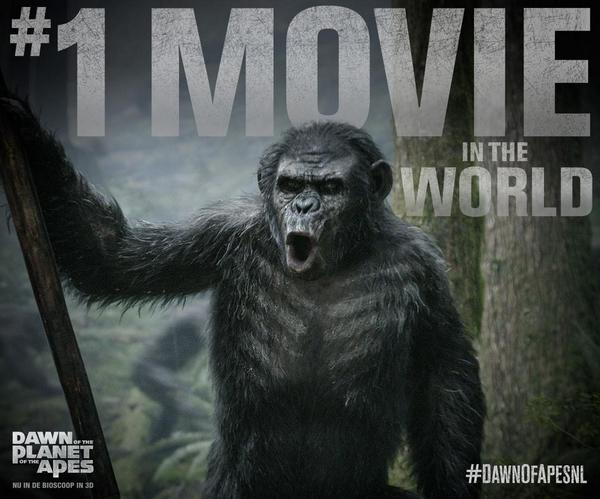 Win een limited edition afbeelding uit de hitfilm 'Dawn of the Planet of the Apes'. RT dit bericht en maak kans! http://t.co/dJQdXHXXRL