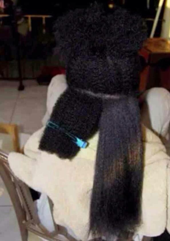 """""""@blakgirlprobs: Shrinkage: deceiving people about black girl's hair length since the straightening comb. http://t.co/jQ0RXzP8HV"""" Oiiiiii"""