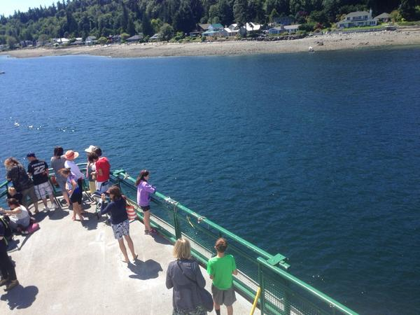 Passengers eyeing the situation - @wsferries Tacoma is marooned about 150 yards from Bainbridge island. http://t.co/nRXysooS6f