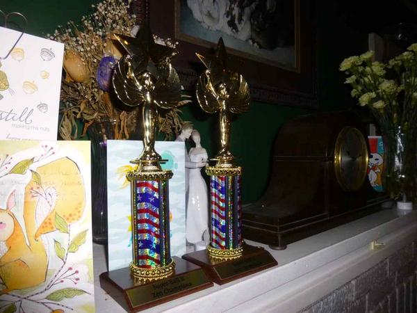 The Zen Championship trophies on our mantle.