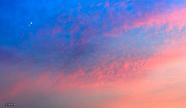 夏の夕暮れ、一瞬の色彩。先ほど撮影した夕月です。 pic.twitter.com/y5TlZo48YM