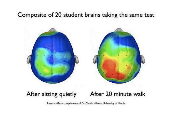 Students need to move at school, as shown by this scan of their brains. http://t.co/U4AOePxCCq
