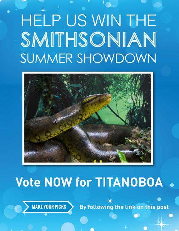 #SIshowdown http://t.co/wxGUX5q2ft http://t.co/nRsuf0ZNSI