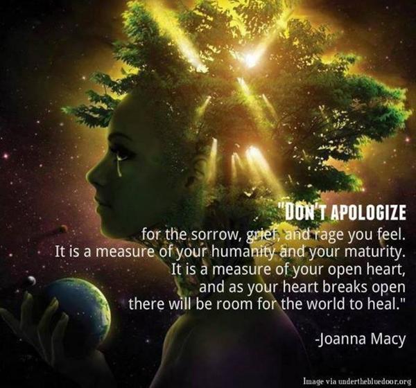 'Don't apologize...' Joanna Macy [720x672] via /r/QuotesPorn ift.tt/1oKXk1P