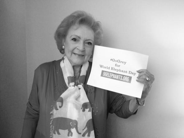 """Betty White joins her friends at AZA zoos & aquariums across the country by """"going grey"""" for #WorldElephantDay! http://t.co/UvEM1B3IGs"""