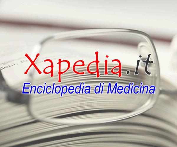 Risultati immagini per xapedia.it
