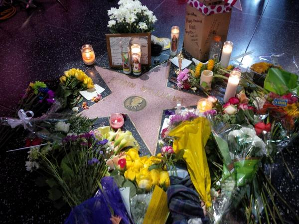 The memorial grows at #RobinWilliams star on the #HollywoodWalkOfFame http://t.co/urhZI3CRUZ