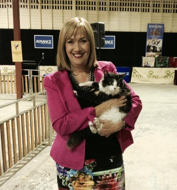 Herding cats is quite a challenge! #ekka #weather http://t.co/QrJtCOTXzr