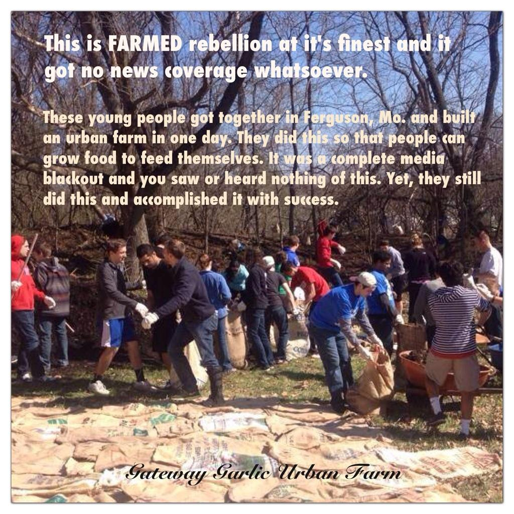 Garden Healing #FarmedUpRising to benefit the #Ferguson Community Aug 17, 2014