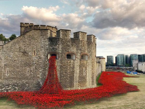 #PoppiesForHeroes Tower of London pours 888,246 to honour the dead of #WW1 http://t.co/EiQU45Chw5