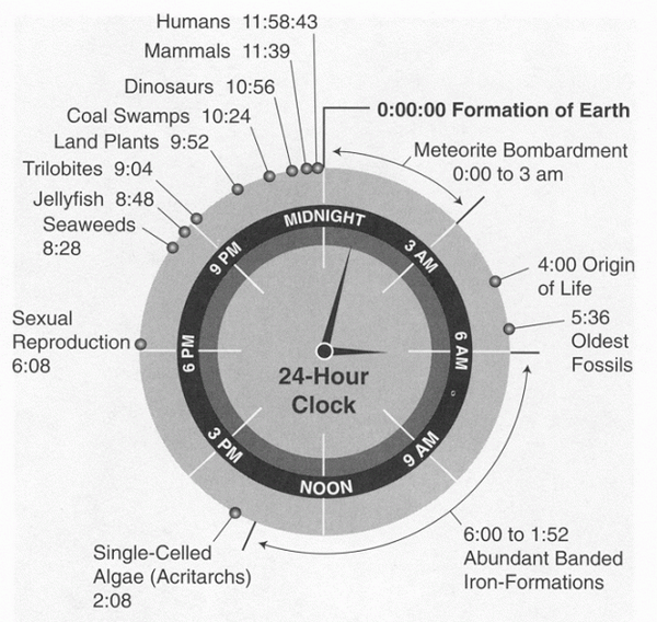 History of Earth in 24-hour clock http://t.co/nHw0lgHUVO