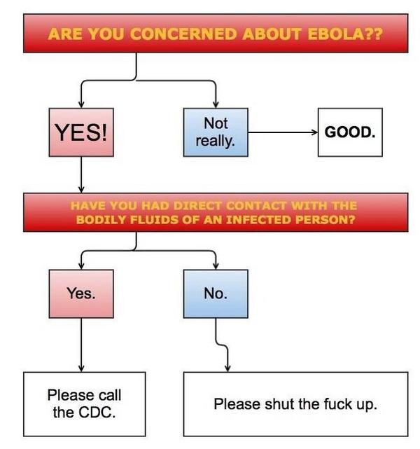 Here is a handy flow chart for Americans planning their Ebola response. http://t.co/WuM96QrRDo