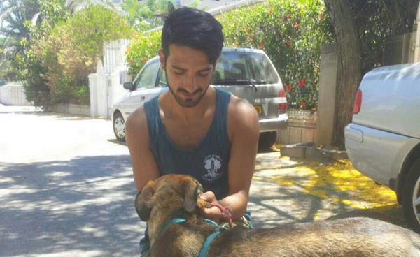 """לוחם צה""""ל אימץ כלב שמצא בעזה: """"קראתי לו צוק"""" http://t.co/aMwc43TTxv http://t.co/XJUXLU88YY"""