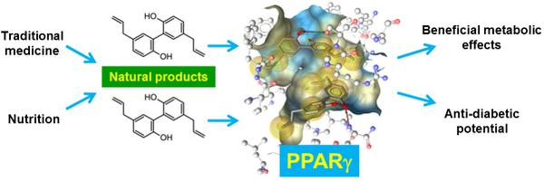 Natural product agonists of peroxisome proliferator-activated receptor gamma (PPARγ): a review http://t.co/sa51VvHj9f http://t.co/WSdzjPQqf3