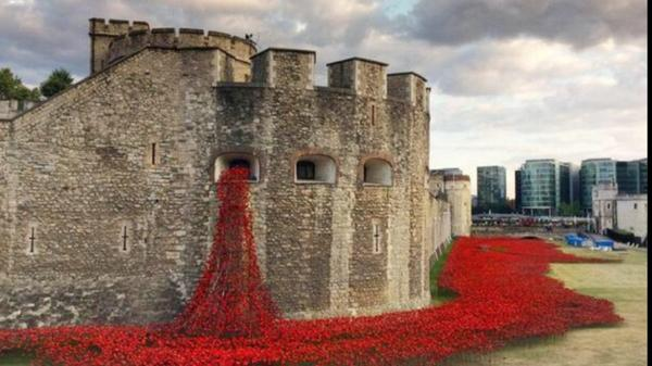 A river of red - 888,246 poppies pour from the Tower of London remembering each British soldier killed in #WW1 http://t.co/LGscmKknX5