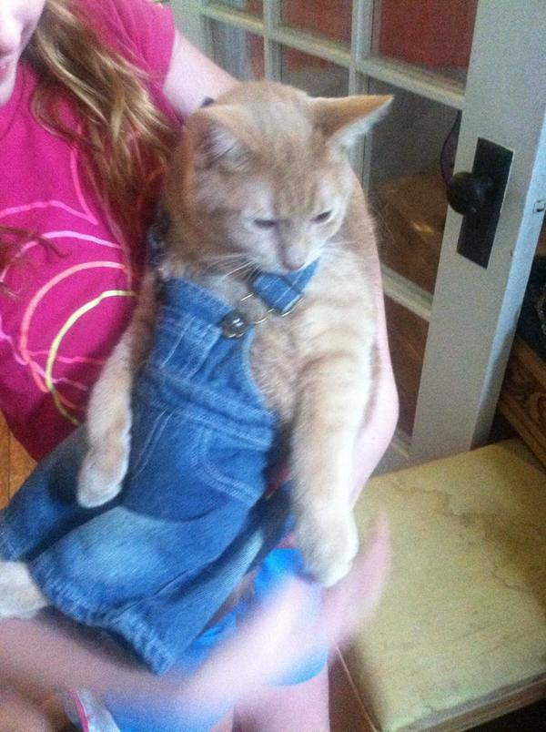 Kelly Willis On Twitter Do These Overalls Make Me Look Fat Our