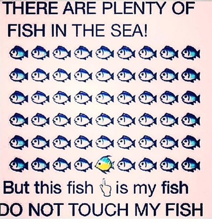 Lots of fish in the sea dating service