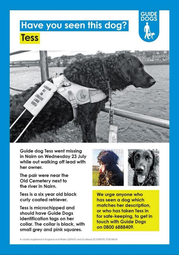 Have you seen guide dog #TESS ? Missing in #Nairn area. #UK help #FindTess the #MissingGuideDog! http://t.co/Nc85H9yzeg #PAWCIRCLE RT