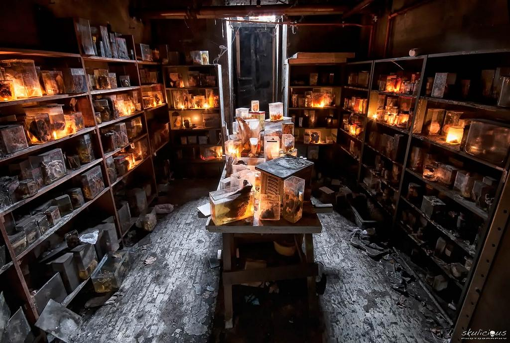 Abandoned Places on Twitter Horror Labs basement of the