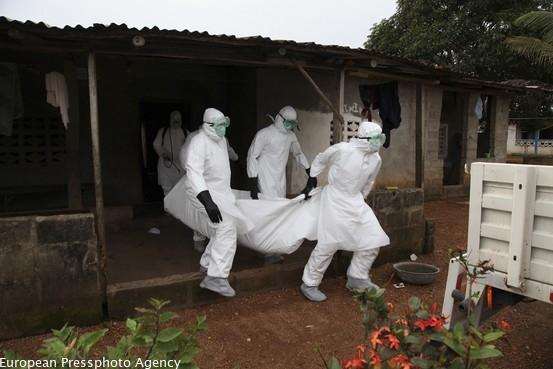 Japanese drug emerges as a candidate for treating deadly Ebola virus http://t.co/0X6zwyc60E http://t.co/ArL5lWkwwB