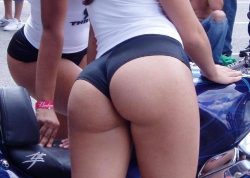 Yoga Pant Shorts