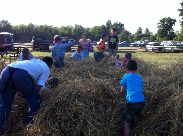 Some things never change. A big pile of hay is always fun to jump in. http://t.co/hhjfgMv0ZT