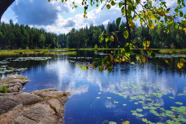 Look how beautiful Finland is - this photo has been taken in Nuuksio National Park #OutdoorsFinland @OurFinland #ttot http://t.co/Q0qZ3Ybyf7