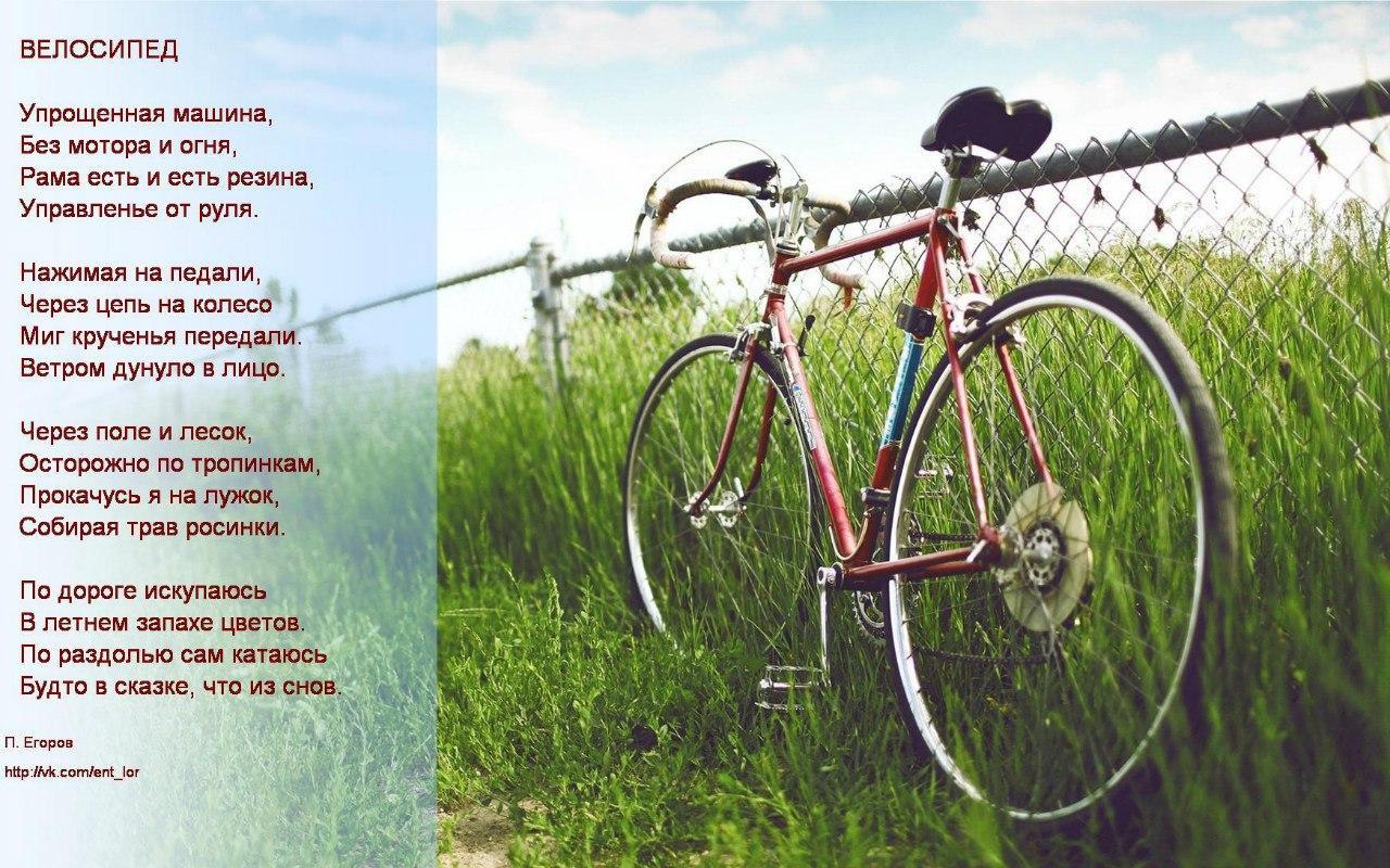 темными стихи к подарку велосипед затерянной мифической