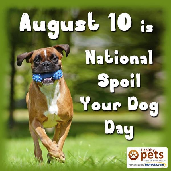 Today is national spoil your dog day. What are you doing to make that happen? http://t.co/CrQT4Wu6Nn